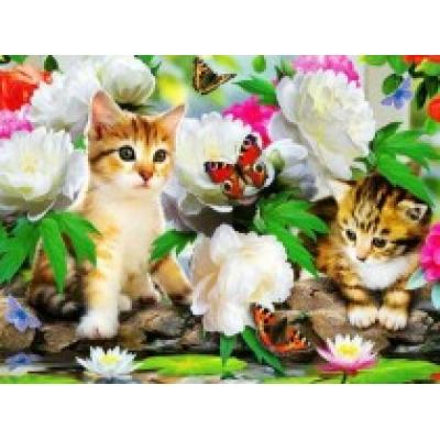 Diamond painting pakket 50x40cm: butterflies-kittens