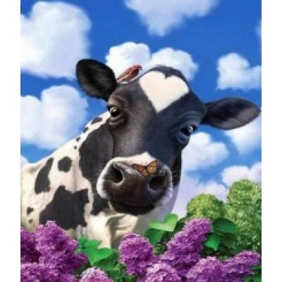 Diamond painting pakket 40x30: cow