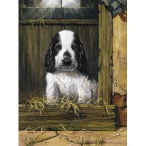 Schilderen op nummer 30x20cm: spaniel puppy