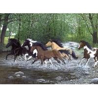 Schilderen op nummer 40x30cm: rennende paarden