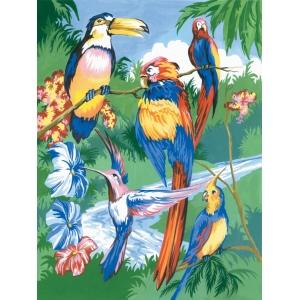 Schilderen op nummer 30x20cm: tropische vogels